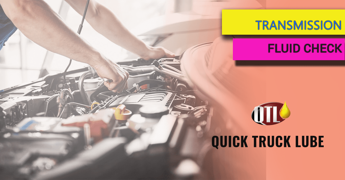 Transmission Fluid Check
